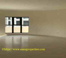 semi furnished penthouse