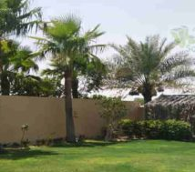 riffa views house with garden