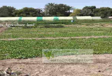 Bahrain agriculture land