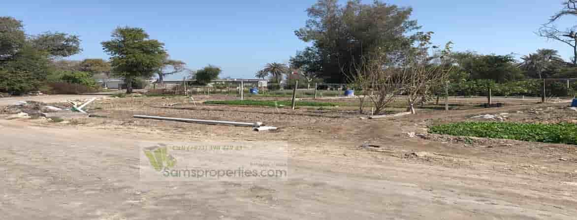 poultry farm rent Bahrain